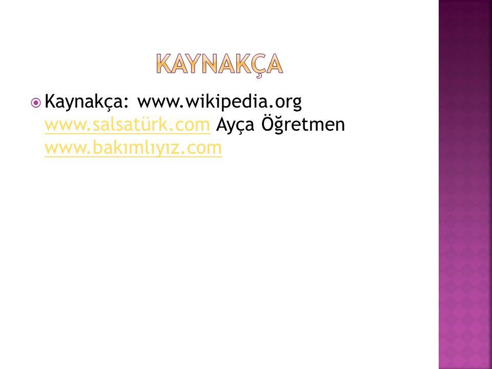 Kaynakça Kaynakça: www.wikipedia.org www.salsatürk.com Ayça Öğretmen www.bakımlıyız.com