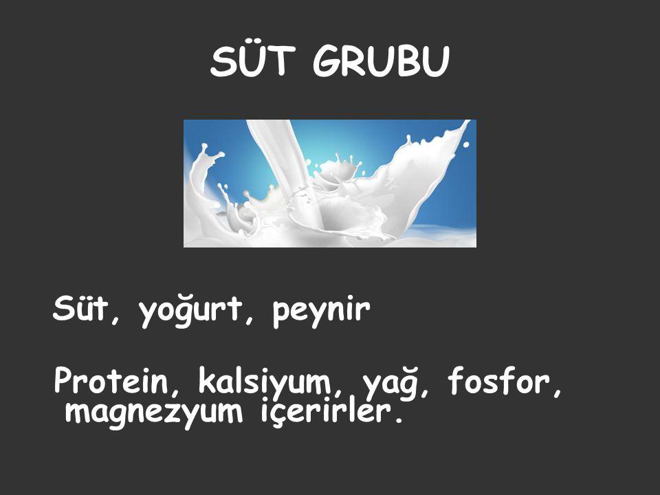 SÜT GRUBU Protein, kalsiyum, yağ, fosfor, magnezyum içerirler.