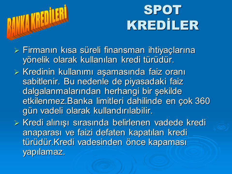 SPOT KREDİLER BANKA KREDİLERİ