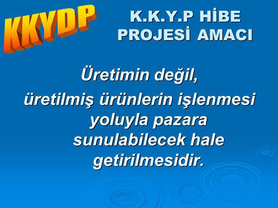 K.K.Y.P HİBE PROJESİ AMACI