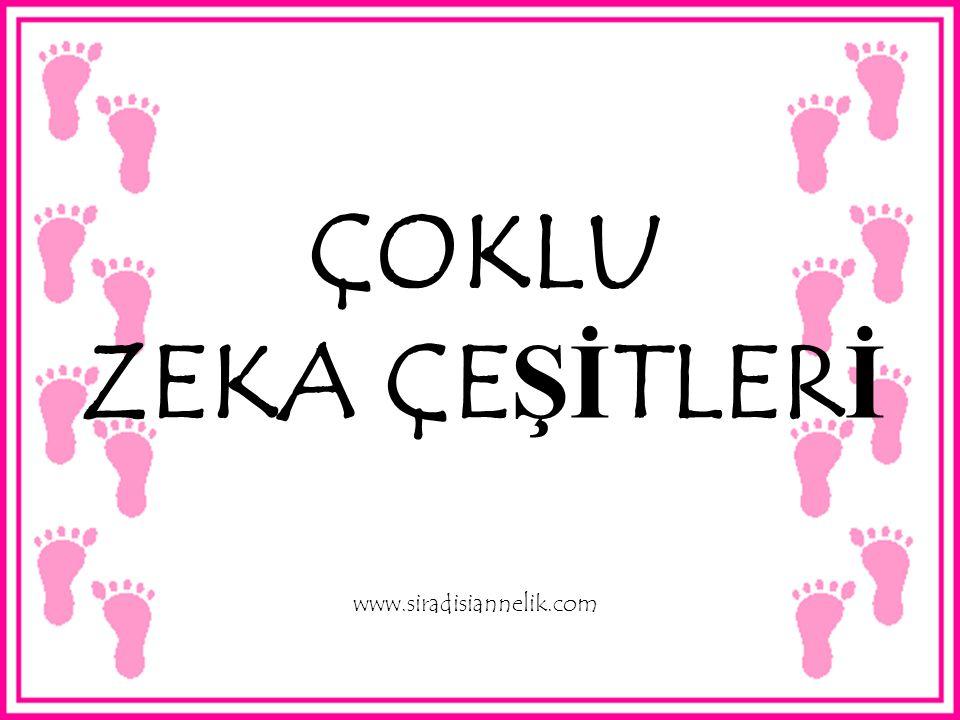 ÇOKLU ZEKA ÇEŞİTLERİ www.siradisiannelik.com