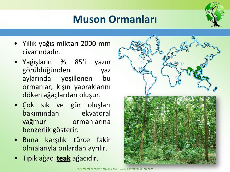 Muson Ormanları Yıllık yağış miktarı 2000 mm civarındadır.