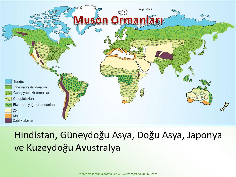 Muson Ormanları Hindistan, Güneydoğu Asya, Doğu Asya, Japonya ve Kuzeydoğu Avustralya