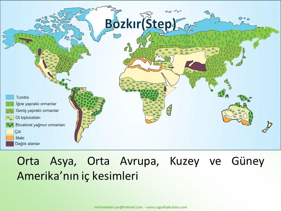 Bozkır(Step) Orta Asya, Orta Avrupa, Kuzey ve Güney Amerika'nın iç kesimleri