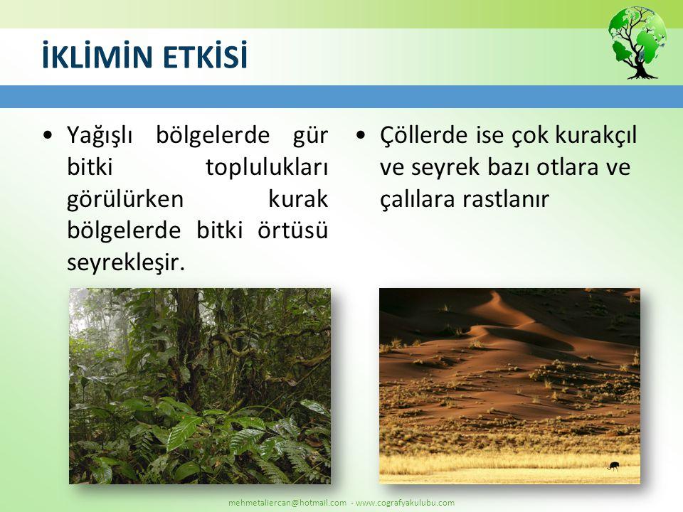İKLİMİN ETKİSİ Yağışlı bölgelerde gür bitki toplulukları görülürken kurak bölgelerde bitki örtüsü seyrekleşir.