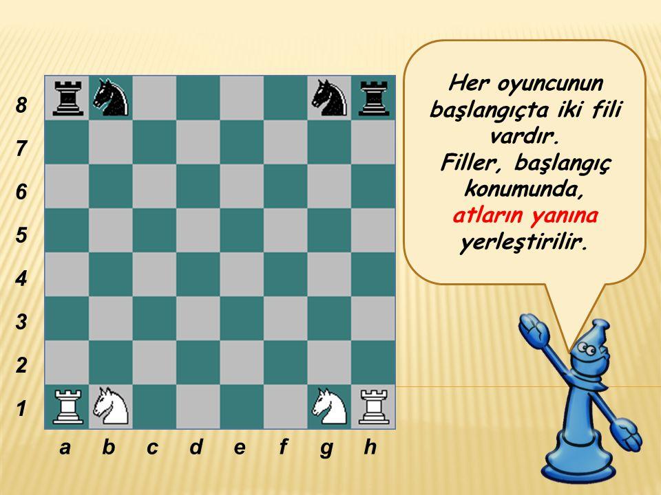 Her oyuncunun başlangıçta iki fili vardır.