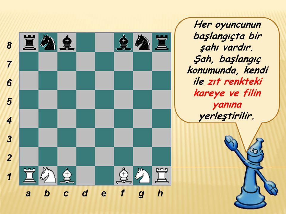 Her oyuncunun başlangıçta bir şahı vardır.
