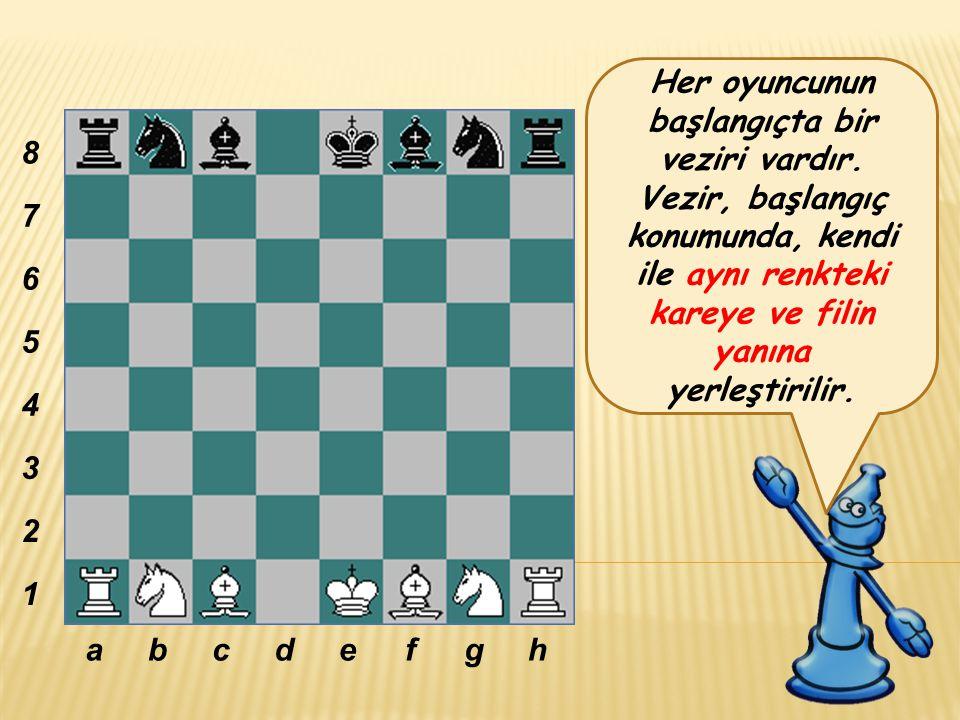 Her oyuncunun başlangıçta bir veziri vardır.