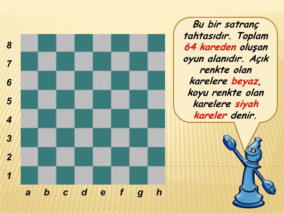 Bu bir satranç tahtasıdır. Toplam 64 kareden oluşan oyun alanıdır