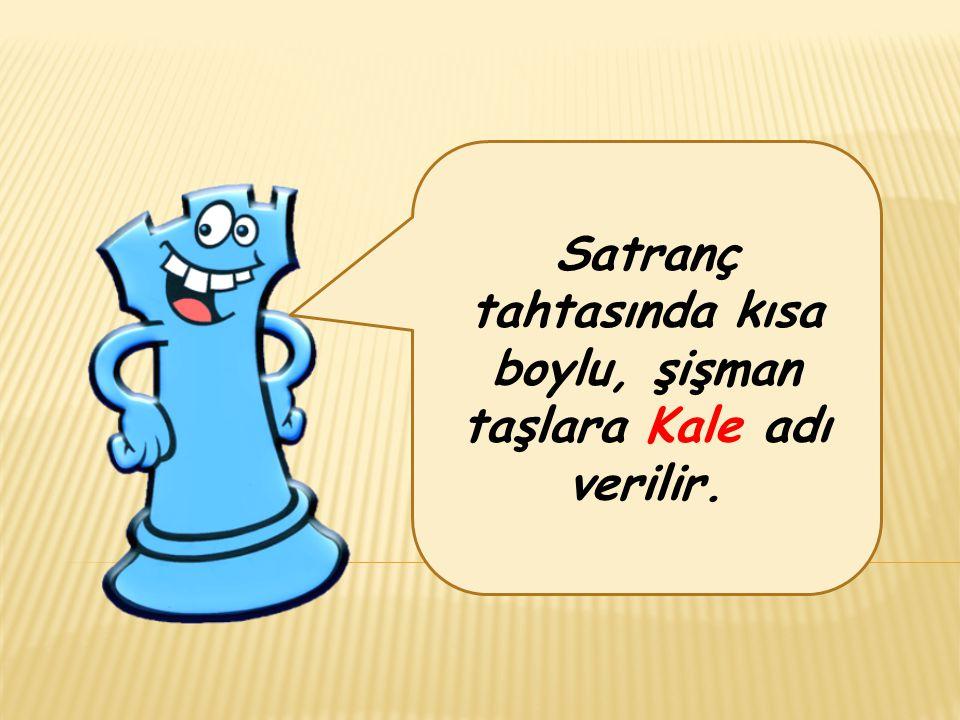 Satranç tahtasında kısa boylu, şişman taşlara Kale adı verilir.