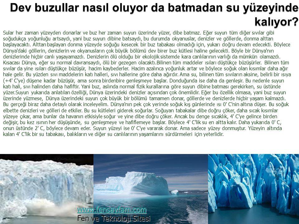 Dev buzullar nasıl oluyor da batmadan su yüzeyinde kalıyor