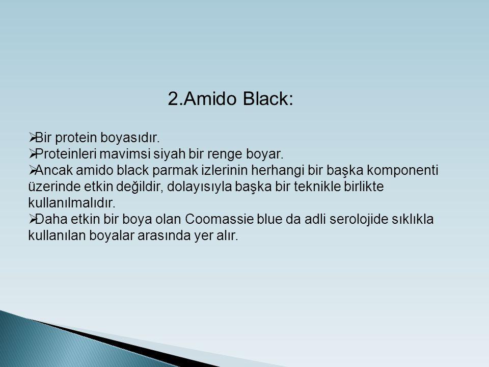 2.Amido Black: Bir protein boyasıdır.