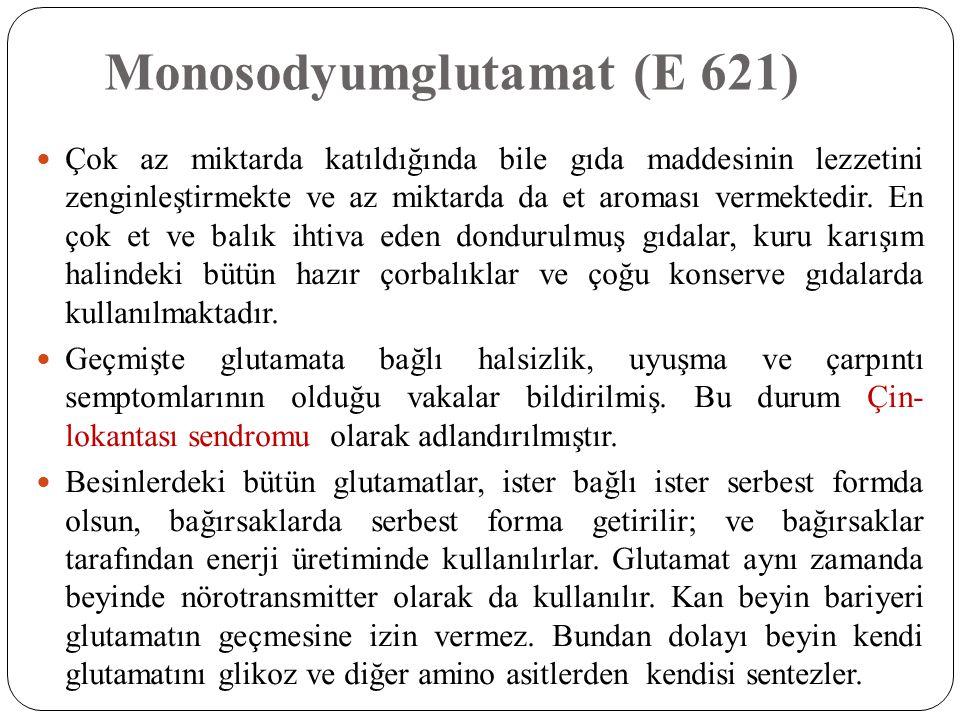 Monosodyumglutamat (E 621)