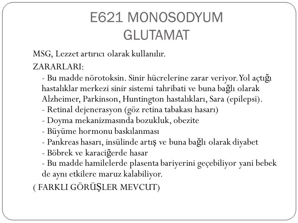 E621 MONOSODYUM GLUTAMAT