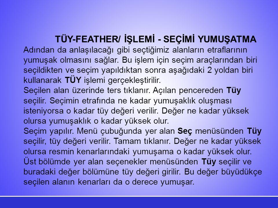 TÜY-FEATHER/ İŞLEMİ - SEÇİMİ YUMUŞATMA