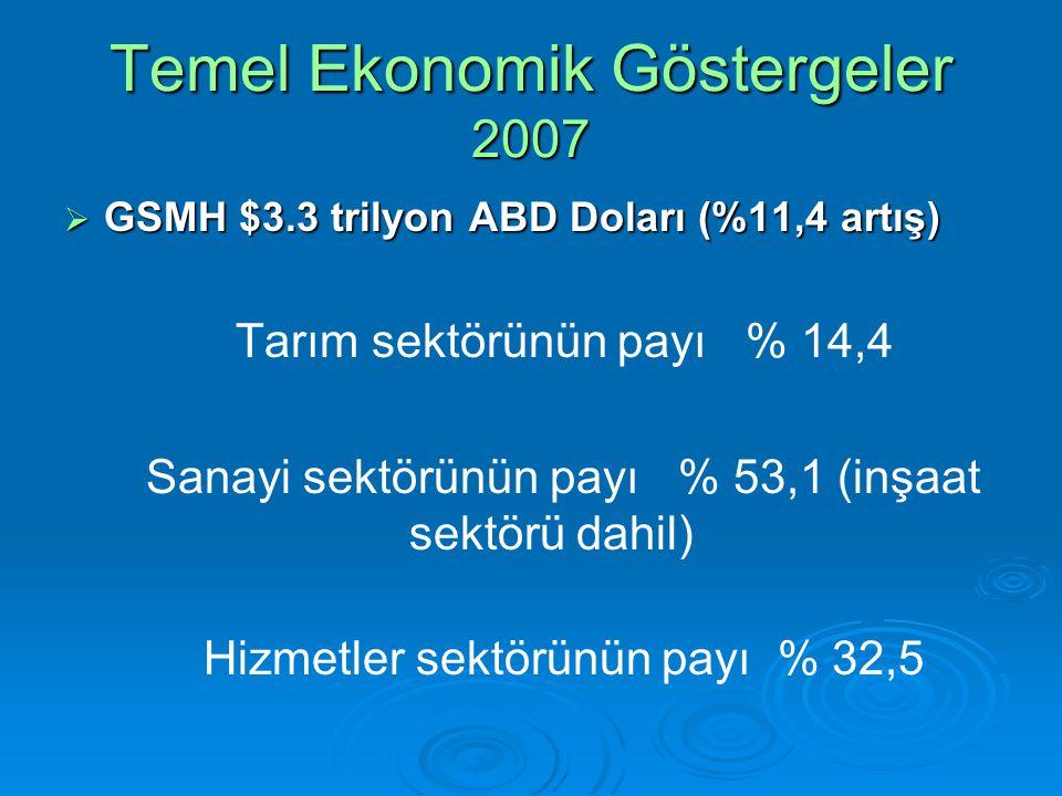 Temel Ekonomik Göstergeler 2007