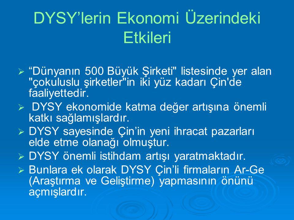 DYSY'lerin Ekonomi Üzerindeki Etkileri
