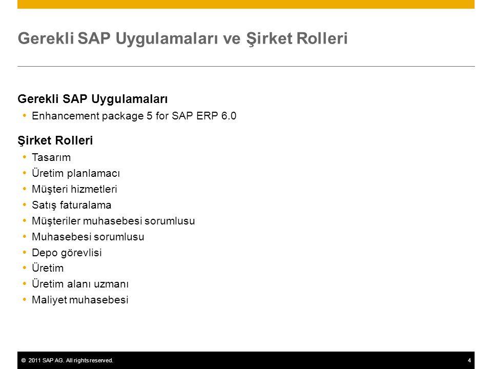 Gerekli SAP Uygulamaları ve Şirket Rolleri