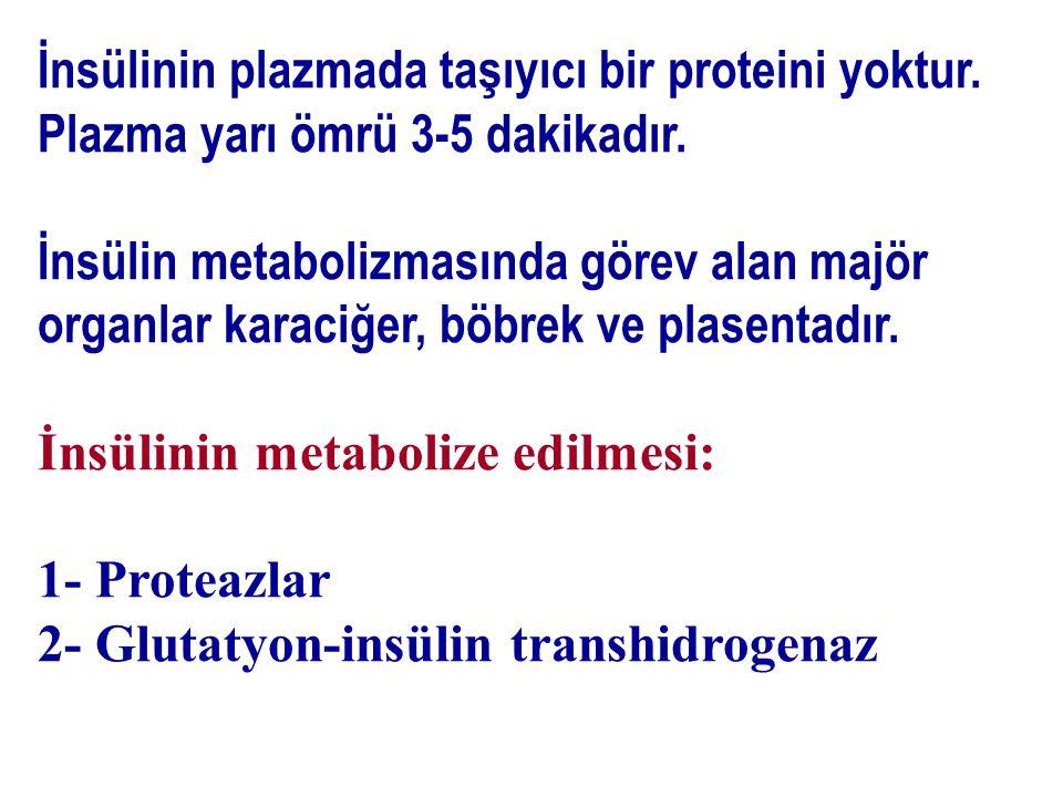 İnsülinin plazmada taşıyıcı bir proteini yoktur.