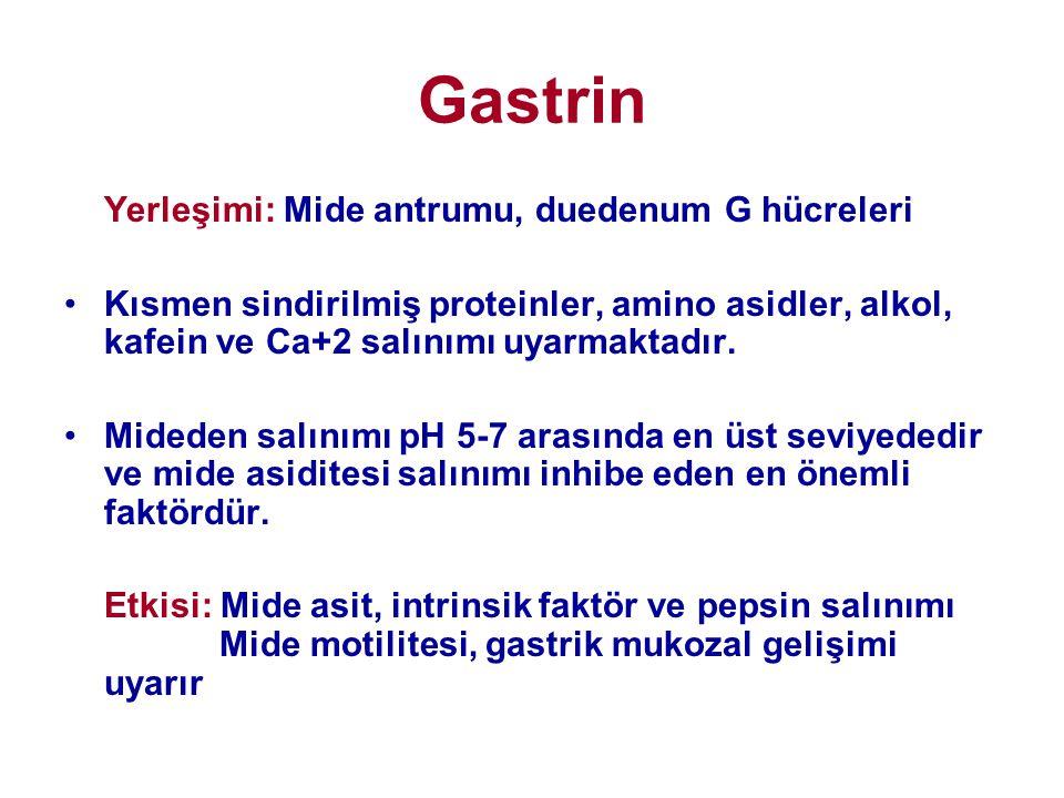Gastrin Yerleşimi: Mide antrumu, duedenum G hücreleri