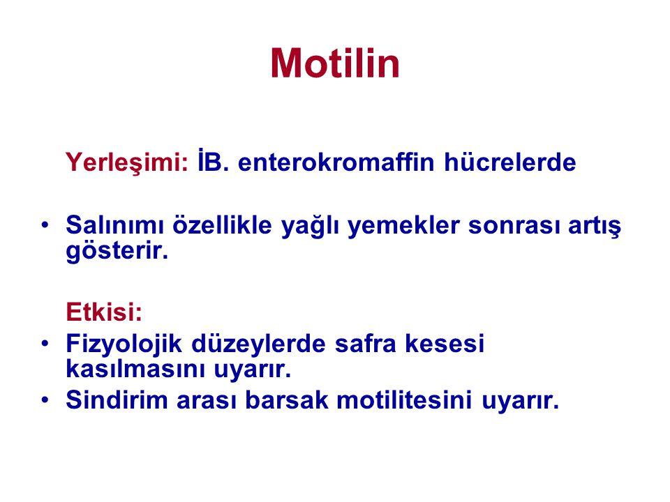 Motilin Yerleşimi: İB. enterokromaffin hücrelerde