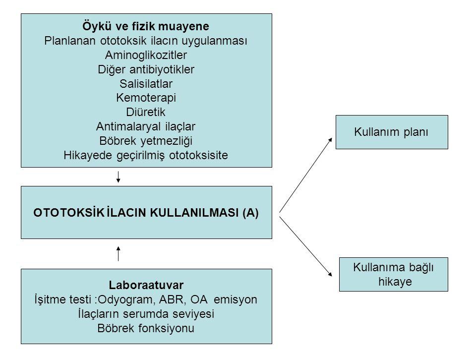 OTOTOKSİK İLACIN KULLANILMASI (A)
