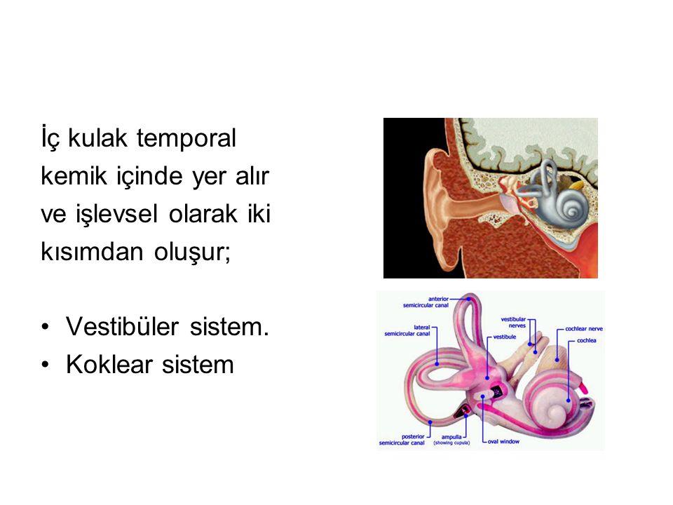 İç kulak temporal kemik içinde yer alır. ve işlevsel olarak iki. kısımdan oluşur; Vestibüler sistem.