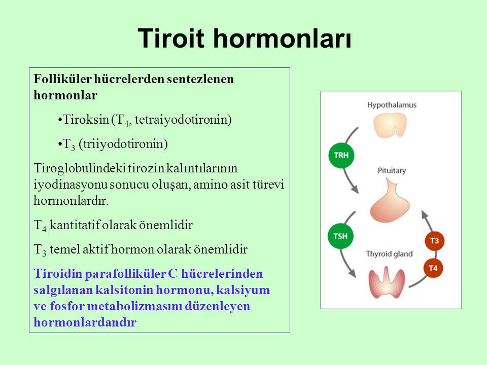 Tiroit hormonları Folliküler hücrelerden sentezlenen hormonlar