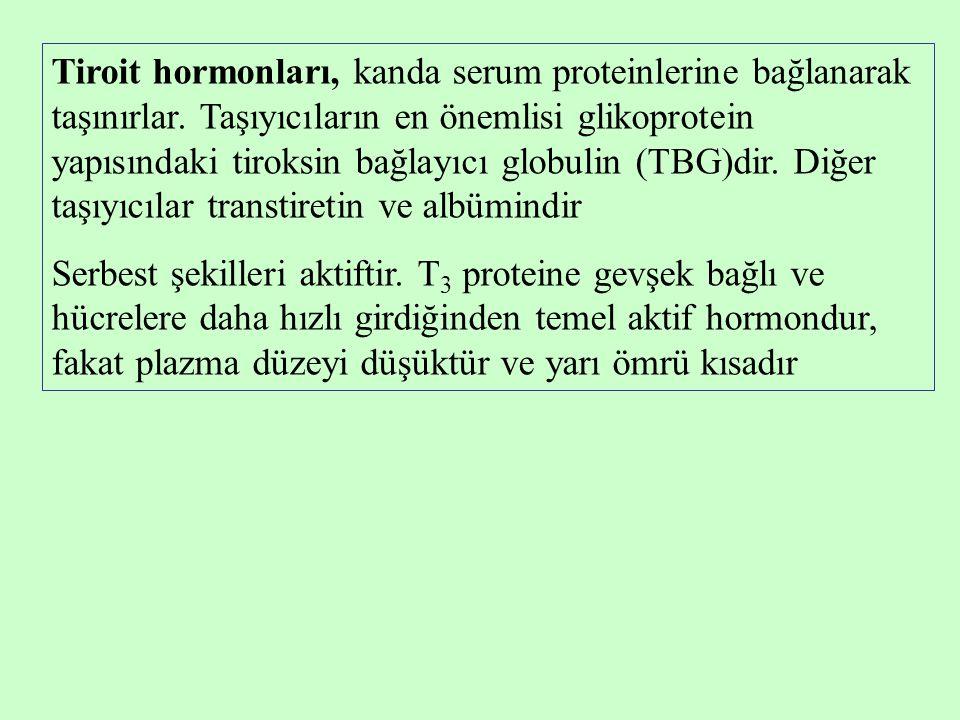 Tiroit hormonları, kanda serum proteinlerine bağlanarak taşınırlar