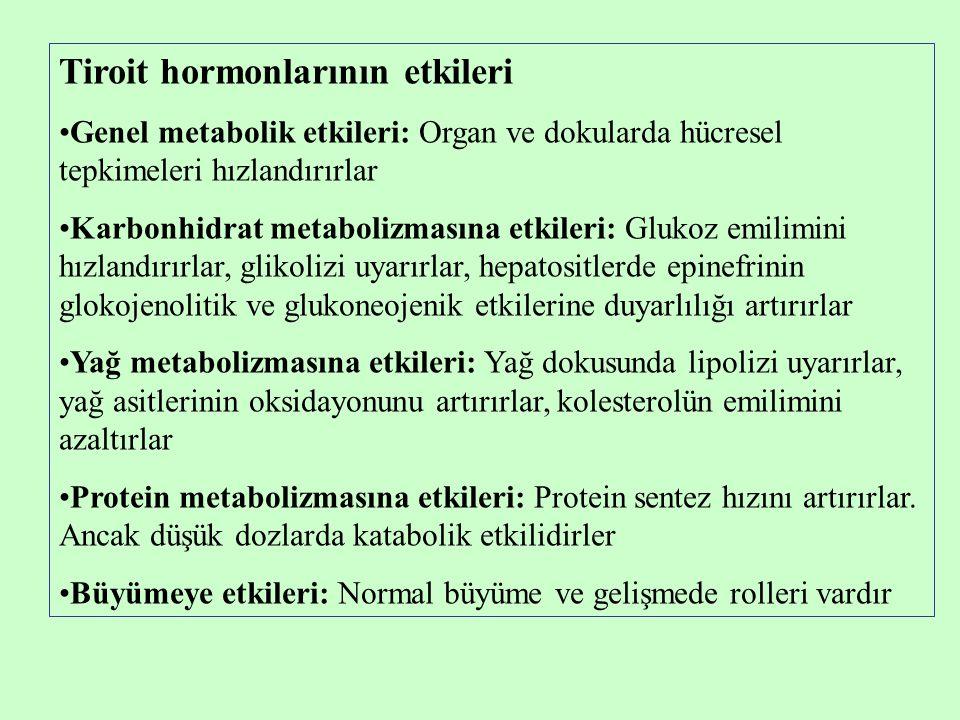 Tiroit hormonlarının etkileri