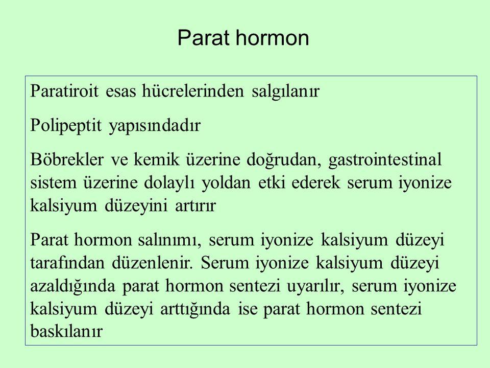 Parat hormon Paratiroit esas hücrelerinden salgılanır