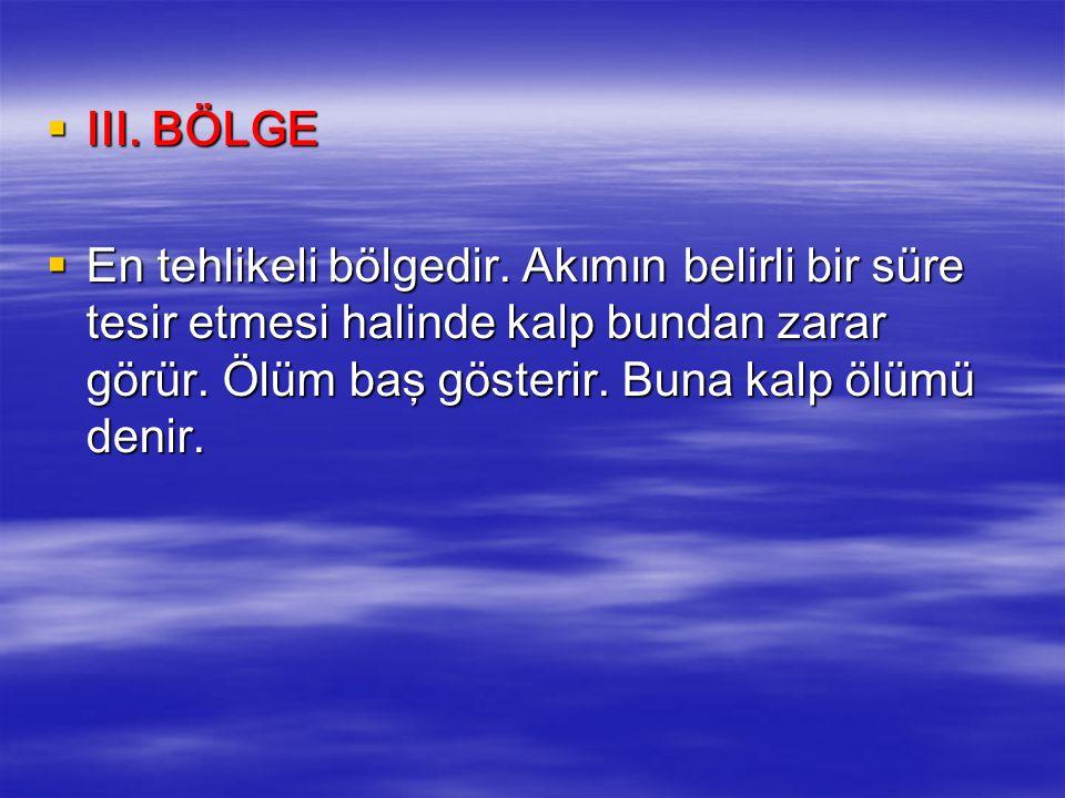 III. BÖLGE En tehlikeli bölgedir.