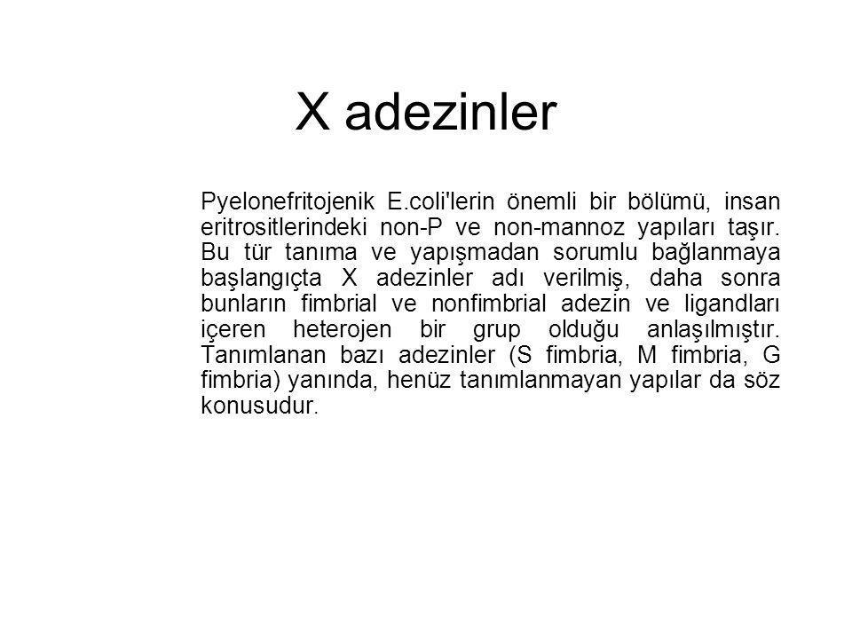 X adezinler