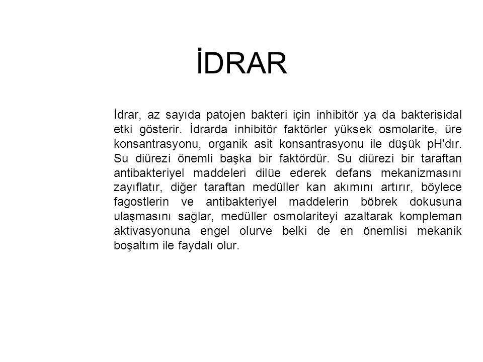İDRAR