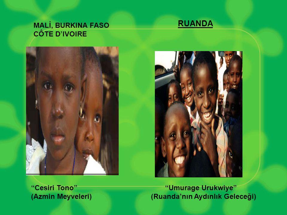 RUANDA MALİ, BURKINA FASO CÔTE D'IVOIRE Cesiri Tono