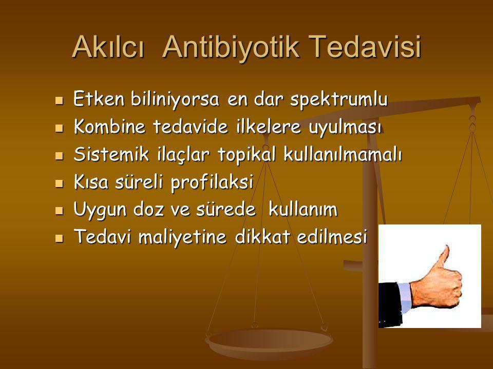 Akılcı Antibiyotik Tedavisi