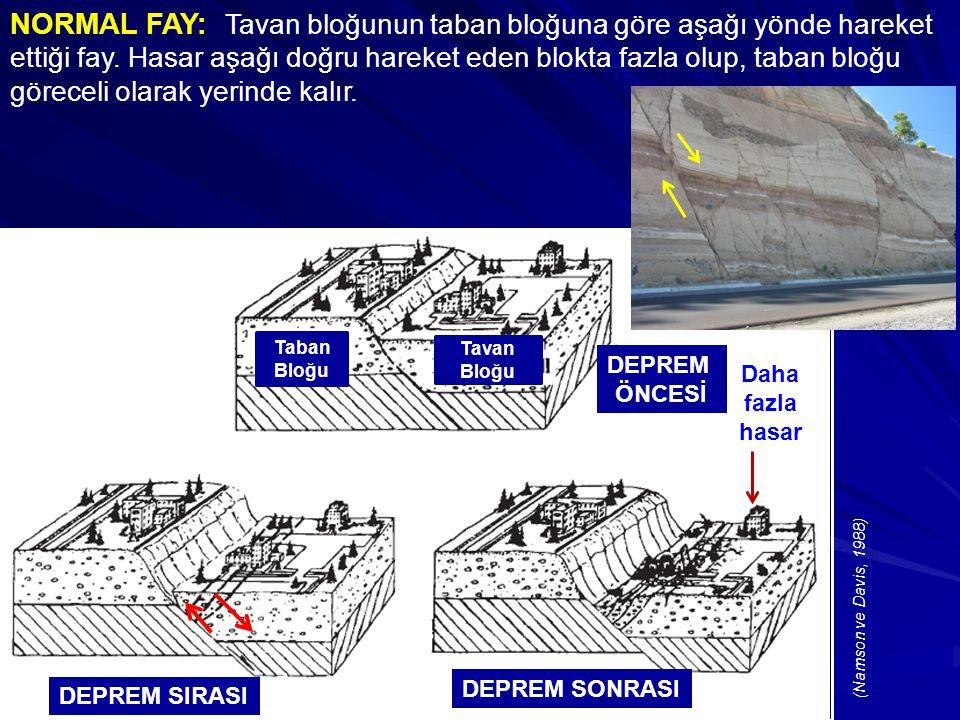 NORMAL FAY: Tavan bloğunun taban bloğuna göre aşağı yönde hareket ettiği fay. Hasar aşağı doğru hareket eden blokta fazla olup, taban bloğu göreceli olarak yerinde kalır.