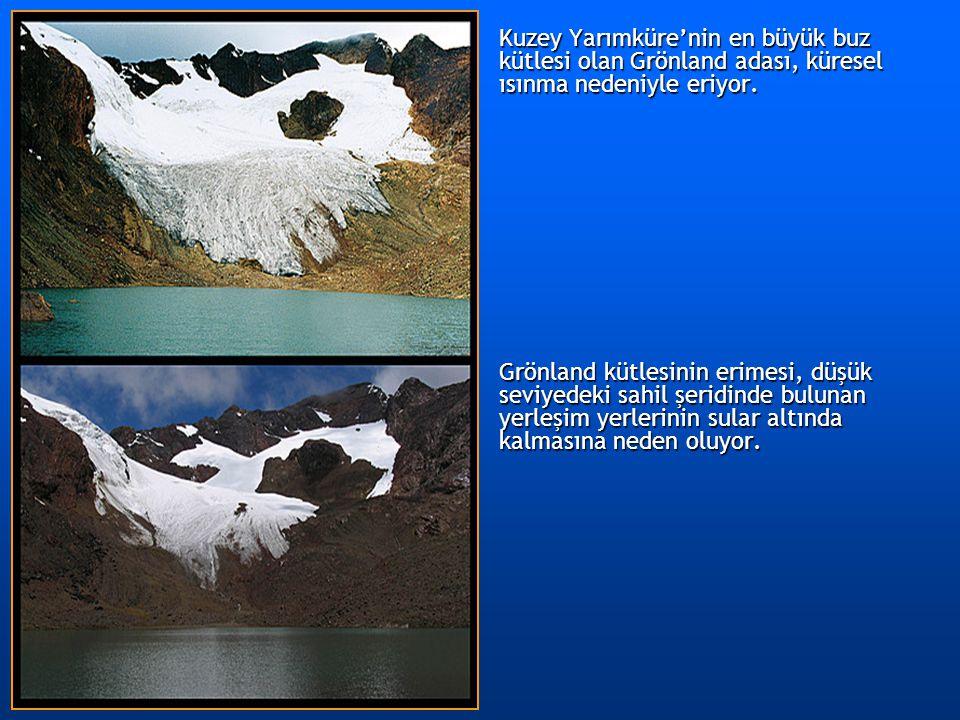 Kuzey Yarımküre'nin en büyük buz kütlesi olan Grönland adası, küresel ısınma nedeniyle eriyor.