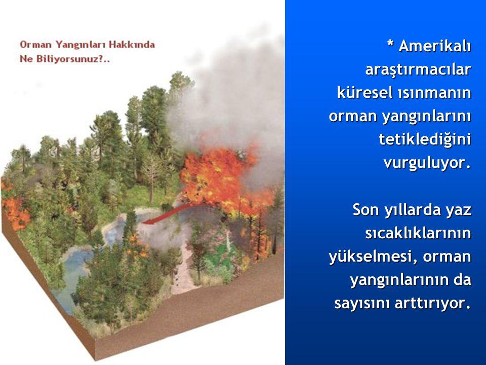 * Amerikalı araştırmacılar. küresel ısınmanın. orman yangınlarını. tetiklediğini. vurguluyor. Son yıllarda yaz.
