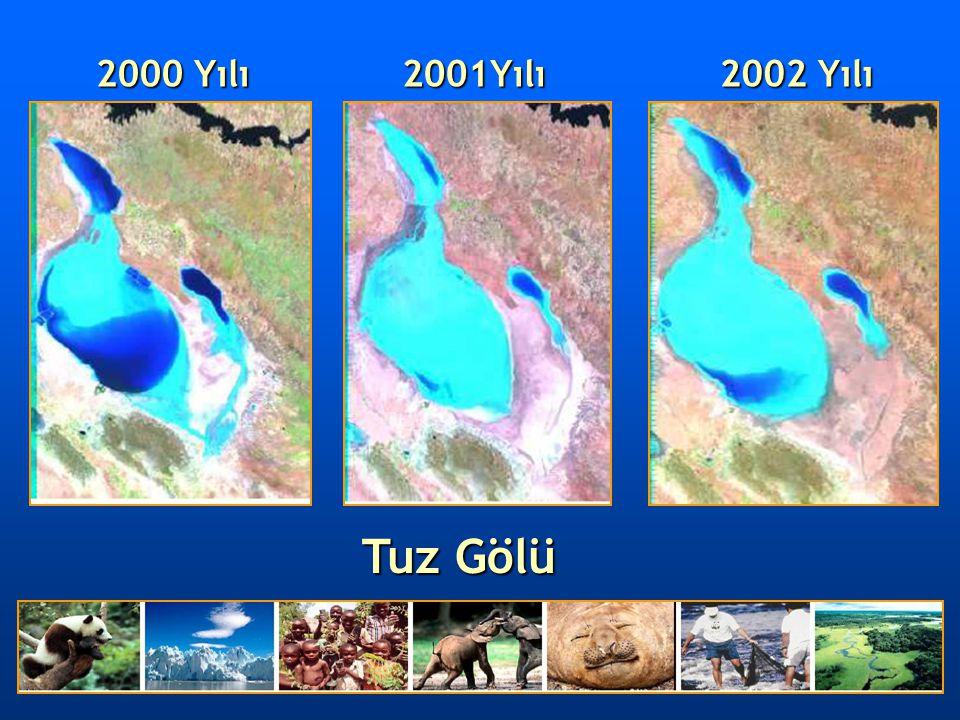 2000 Yılı 2001Yılı 2002 Yılı Tuz Gölü