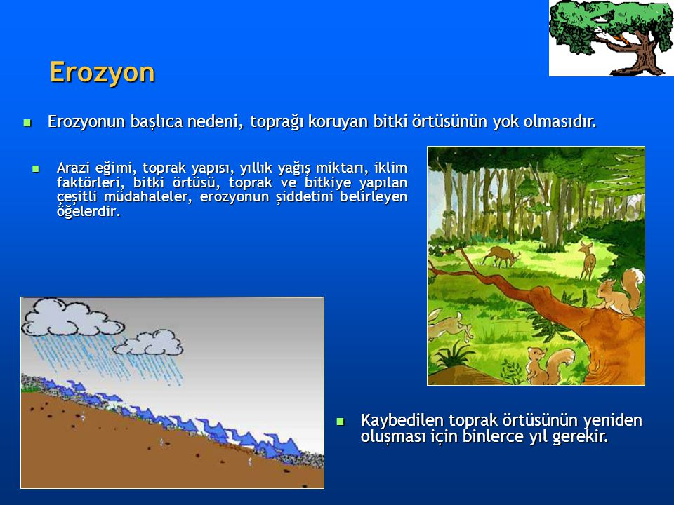 Erozyon Erozyonun başlıca nedeni, toprağı koruyan bitki örtüsünün yok olmasıdır.