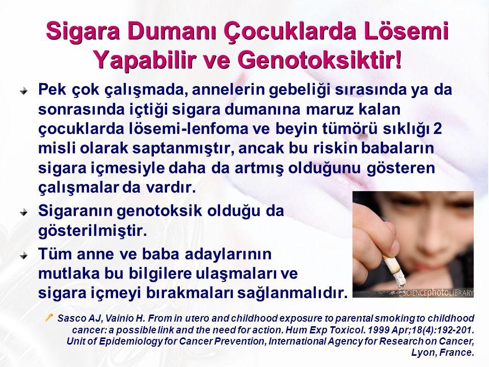 Sigara Dumanı Çocuklarda Lösemi Yapabilir ve Genotoksiktir!