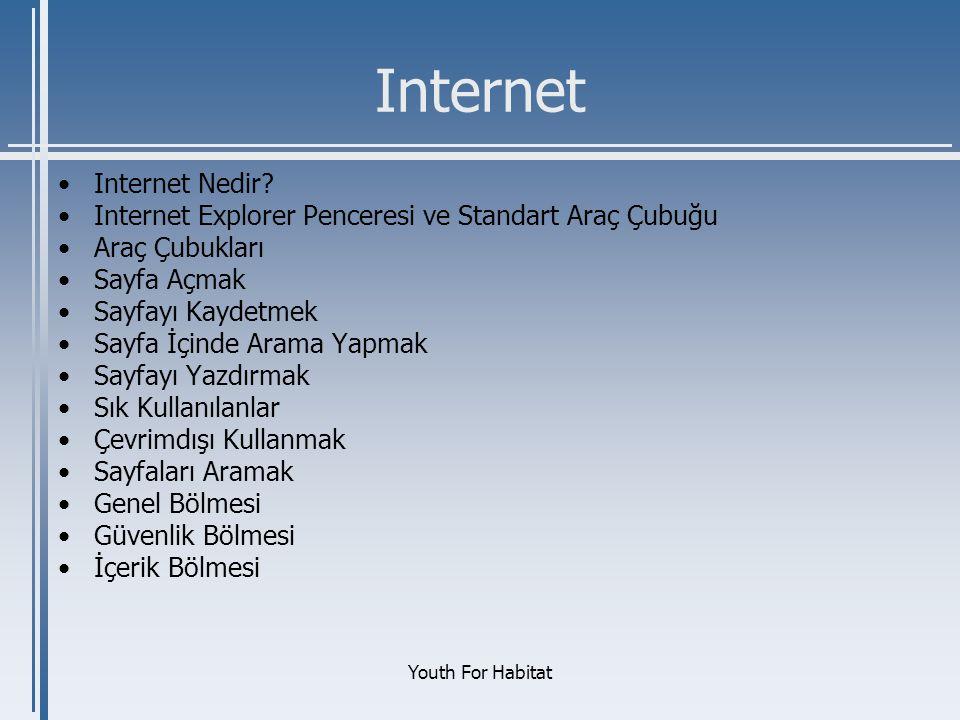 Internet Internet Nedir