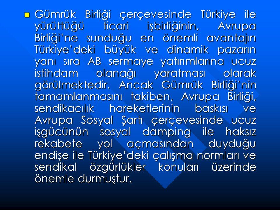 Gümrük Birliği çerçevesinde Türkiye ile yürüttüğü ticari işbirliğinin, Avrupa Birliği'ne sunduğu en önemli avantajın Türkiye'deki büyük ve dinamik pazarın yanı sıra AB sermaye yatırımlarına ucuz istihdam olanağı yaratması olarak görülmektedir.