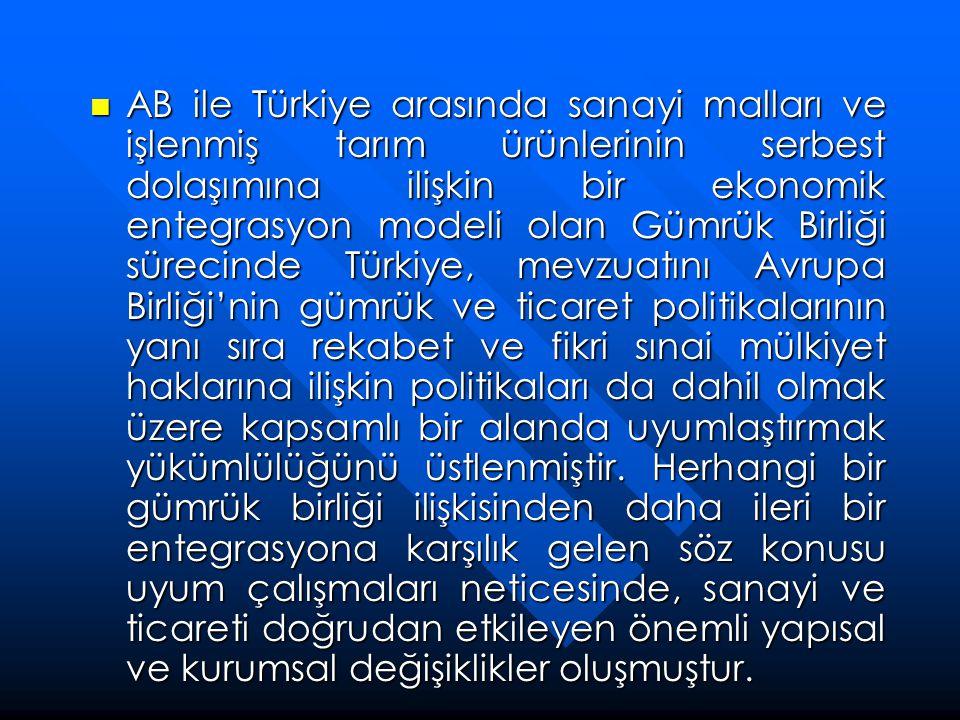 AB ile Türkiye arasında sanayi malları ve işlenmiş tarım ürünlerinin serbest dolaşımına ilişkin bir ekonomik entegrasyon modeli olan Gümrük Birliği sürecinde Türkiye, mevzuatını Avrupa Birliği'nin gümrük ve ticaret politikalarının yanı sıra rekabet ve fikri sınai mülkiyet haklarına ilişkin politikaları da dahil olmak üzere kapsamlı bir alanda uyumlaştırmak yükümlülüğünü üstlenmiştir.
