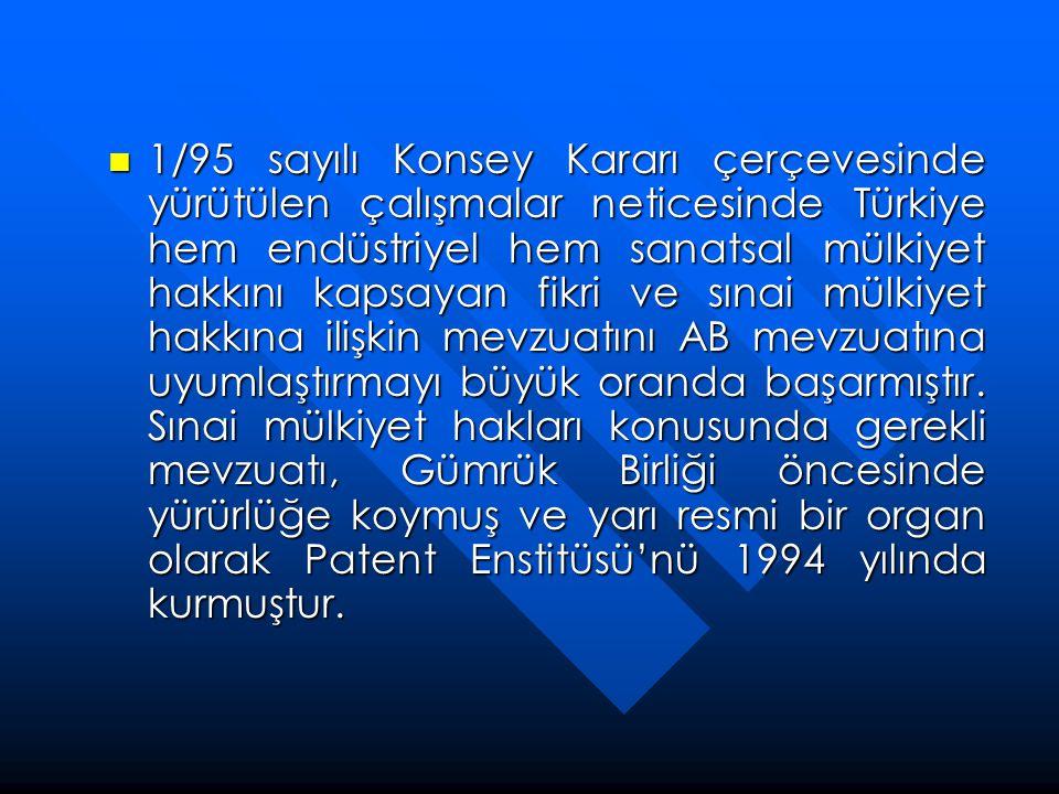 1/95 sayılı Konsey Kararı çerçevesinde yürütülen çalışmalar neticesinde Türkiye hem endüstriyel hem sanatsal mülkiyet hakkını kapsayan fikri ve sınai mülkiyet hakkına ilişkin mevzuatını AB mevzuatına uyumlaştırmayı büyük oranda başarmıştır.
