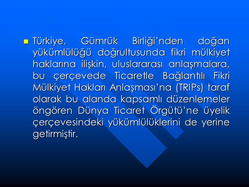 Türkiye, Gümrük Birliği'nden doğan yükümlülüğü doğrultusunda fikri mülkiyet haklarına ilişkin, uluslararası anlaşmalara, bu çerçevede Ticaretle Bağlantılı Fikri Mülkiyet Hakları Anlaşması'na (TRIPs) taraf olarak bu alanda kapsamlı düzenlemeler öngören Dünya Ticaret Örgütü'ne üyelik çerçevesindeki yükümlülüklerini de yerine getirmiştir.