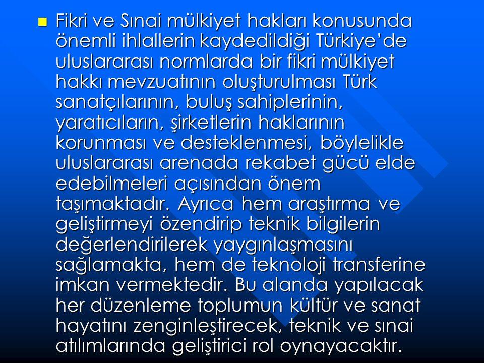 Fikri ve Sınai mülkiyet hakları konusunda önemli ihlallerin kaydedildiği Türkiye'de uluslararası normlarda bir fikri mülkiyet hakkı mevzuatının oluşturulması Türk sanatçılarının, buluş sahiplerinin, yaratıcıların, şirketlerin haklarının korunması ve desteklenmesi, böylelikle uluslararası arenada rekabet gücü elde edebilmeleri açısından önem taşımaktadır.