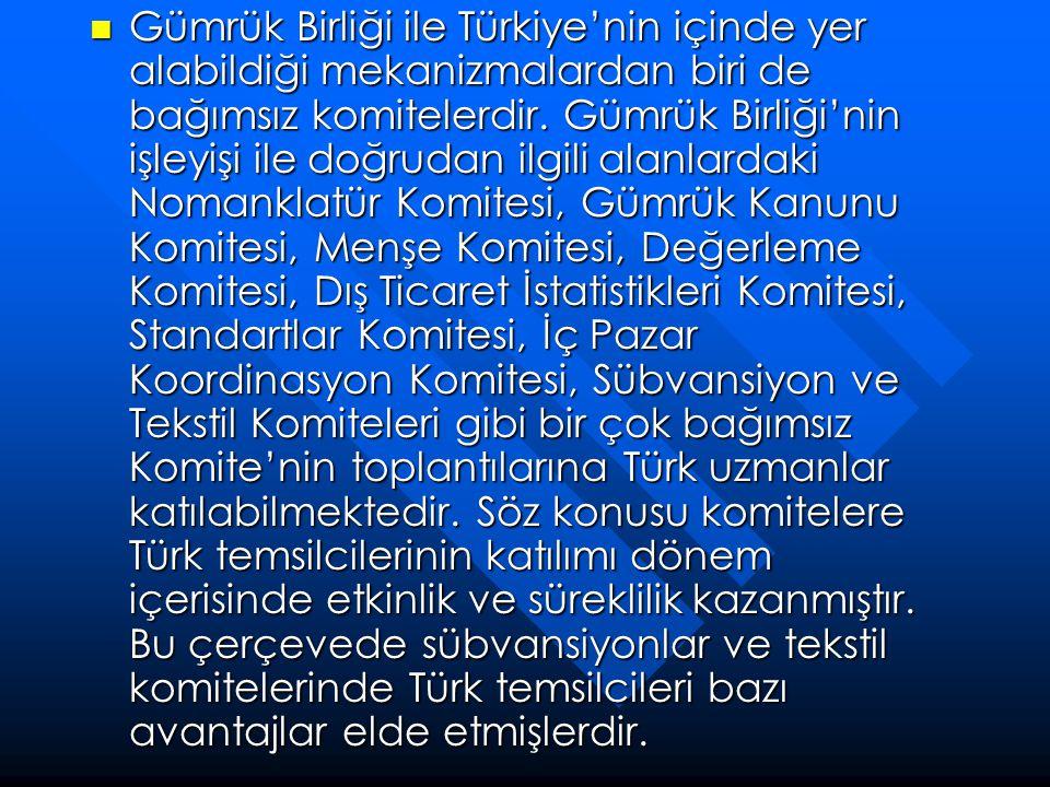 Gümrük Birliği ile Türkiye'nin içinde yer alabildiği mekanizmalardan biri de bağımsız komitelerdir.