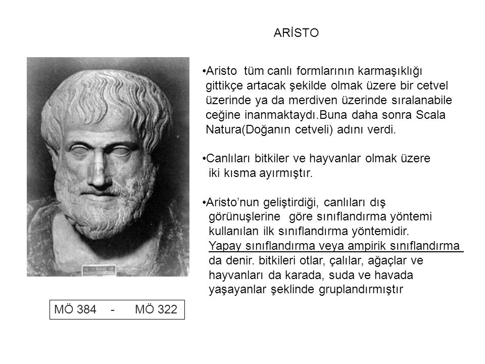 ARİSTO Aristo tüm canlı formlarının karmaşıklığı. gittikçe artacak şekilde olmak üzere bir cetvel.